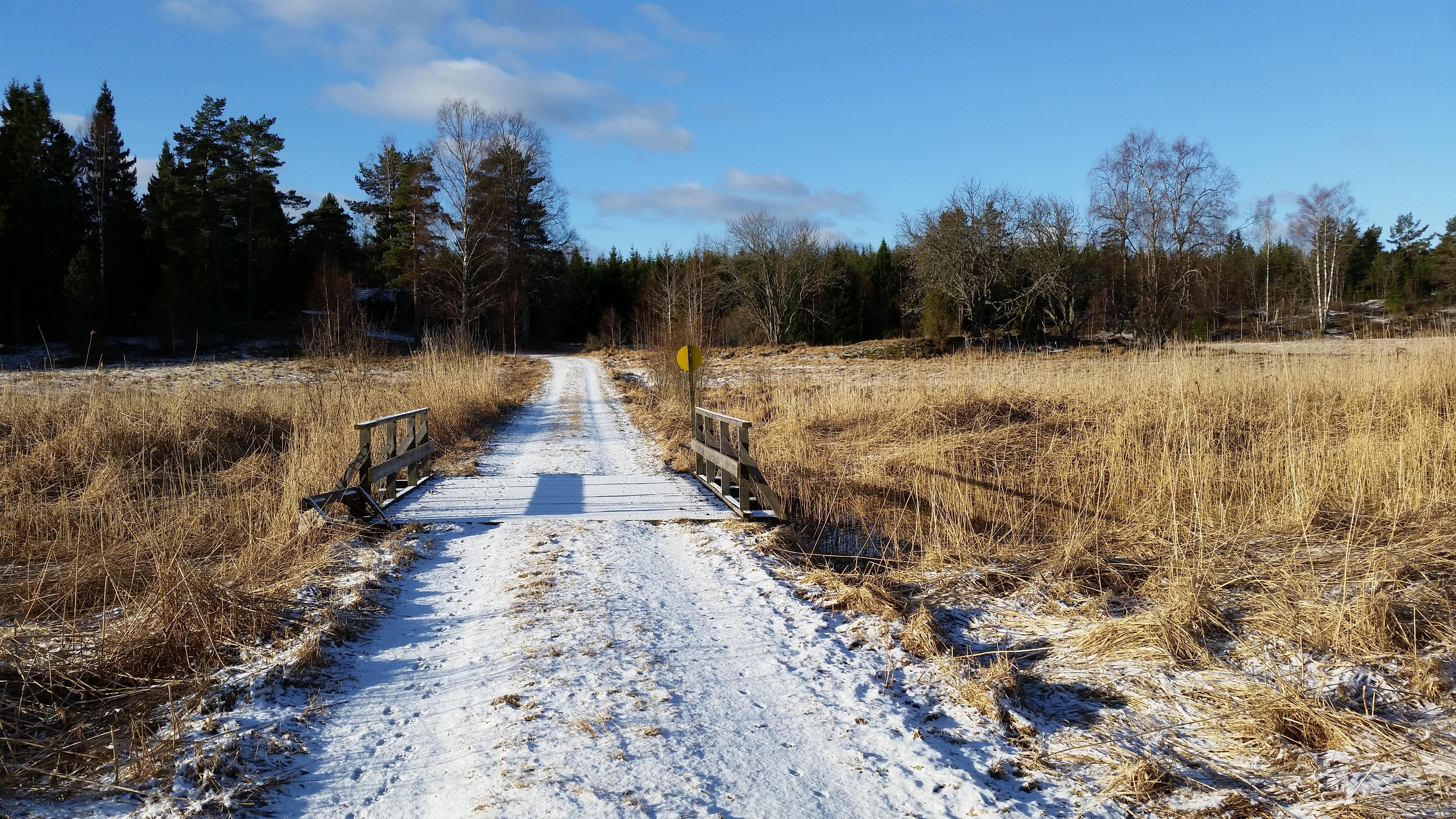 Vom Eise befreit?  Manche Dinge sind in Schweden anders.